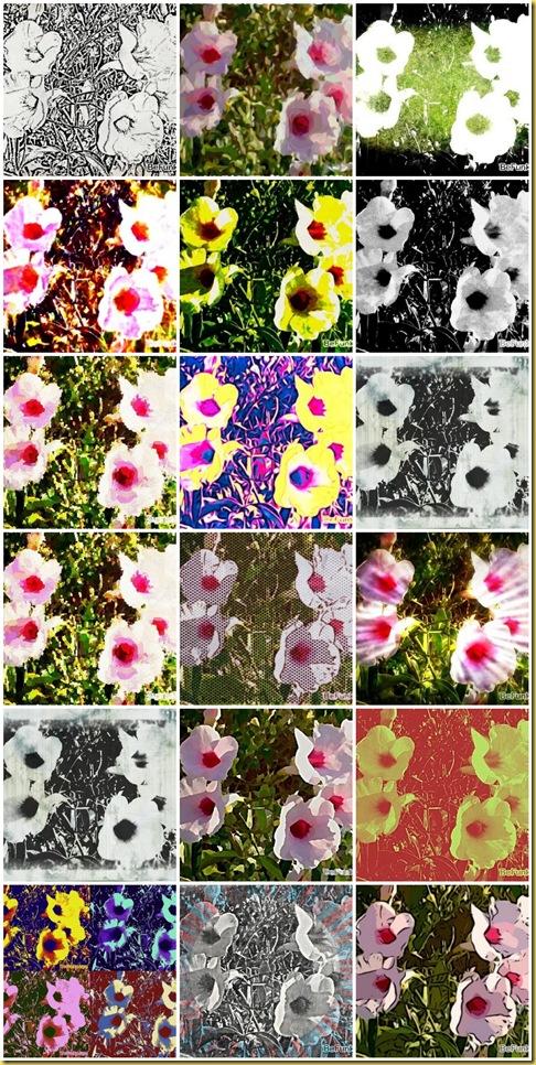 mosaic6a892095a15bf86fd4ea9c7de6993893f39a87f9