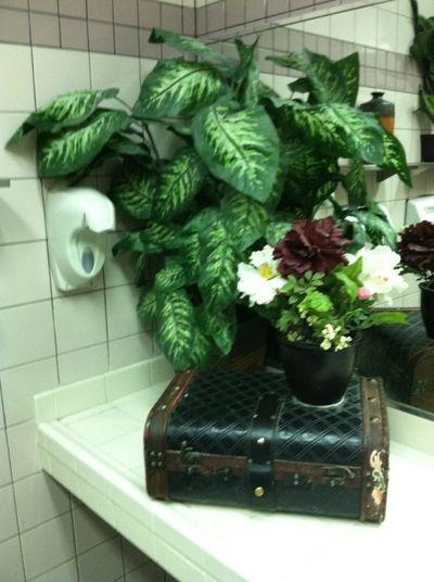 Mcdonaldsbathroom
