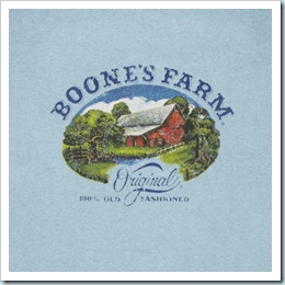 Boones_Farm_Farmhouse_Blue_Shirt